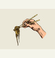 hand holding chopsticks with noodles japanese vector image