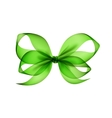 Light Green Transparent Bow Top View Isolated vector image vector image