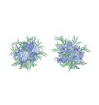 set of elegant bouquets made of beautiful blue vector image vector image