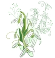 Snowdrops and spring flowers vector image