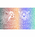 cheetahs color background with heads vector image vector image