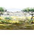 landscape african savanna vector image