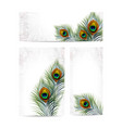 set beautiful peacock feathers eps 10 vector image vector image