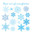 set different blue snowflakes vector image vector image