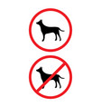 allowed and prohibited dogs signs isolated on back vector image