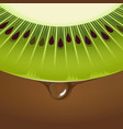 fresh kiwi half slice peel skin texture vector image