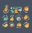 fruits and berries big set vector image vector image
