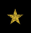golden broken star vector image