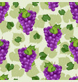 grape bunch seamless pattern on green background vector image