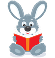 hare reading a book vector image vector image