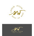 s w handdrawn brush monogram calligraphy logo vector image vector image