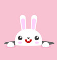 white easter rabbit bunny vector image vector image