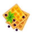 belgian waffle with honey sweet dessert for vector image
