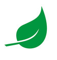leaf icon eco and bio logo vector image