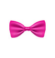 pink bow tie from satin material vector image vector image
