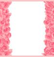 pink carnation flower border vector image vector image