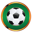 Soccer Ball Icon2 vector image vector image