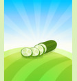 banner template with cucumber - vegetables trade vector image
