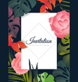 hand drawn tropical plant rose heliconia palm vector image vector image
