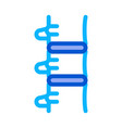 human spine icon outline vector image