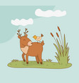 cute reindeer and bird in field woodland vector image