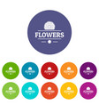 flower spring icons set color vector image vector image