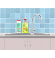 household cleaning products advertising vector image