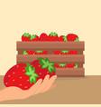 strawberries in wooden box vector image vector image
