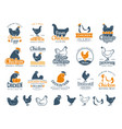 chicken badges fresh farm food logotype cooking vector image vector image