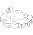 colorless funny cartoon walrus on ice floe vector image
