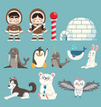 cute arctic and north pole animals set vector image