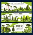 landscape design park and square vector image