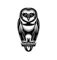 monochrome with a sitting owl vector image vector image