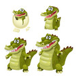 stages of growth and maturation of crocodiles vector image
