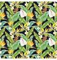 Tropical watercolor pattern vector image vector image