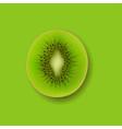 banner with fruit kiwi vector image