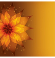 Golden background with decorative flower vector image