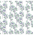 eucalyptus branches seamless pattern vector image