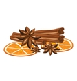 Cinnamon anise and orange on a white background vector image vector image