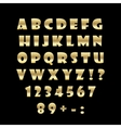 English golden alphabet on a black background vector image vector image