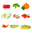 stylish design set of fruits and vegetables vector image vector image