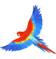 ara macaw parrot spread wings vector image