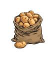 burlap sack full of ripe potato hand drawn vector image