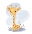 cute bagiraffe on meadow vector image vector image