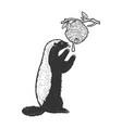 honey badger ratel sketch vector image vector image