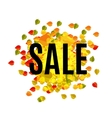 Isolated abstract colorful sale logo on leaves vector image vector image