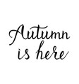 modern brush phrase autumn is here vector image