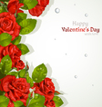 Valentines day card with red roses vector image vector image