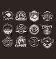 vintage summer camping badges vector image vector image