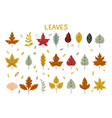autumn leaves fall set colorful leaves simple vector image vector image